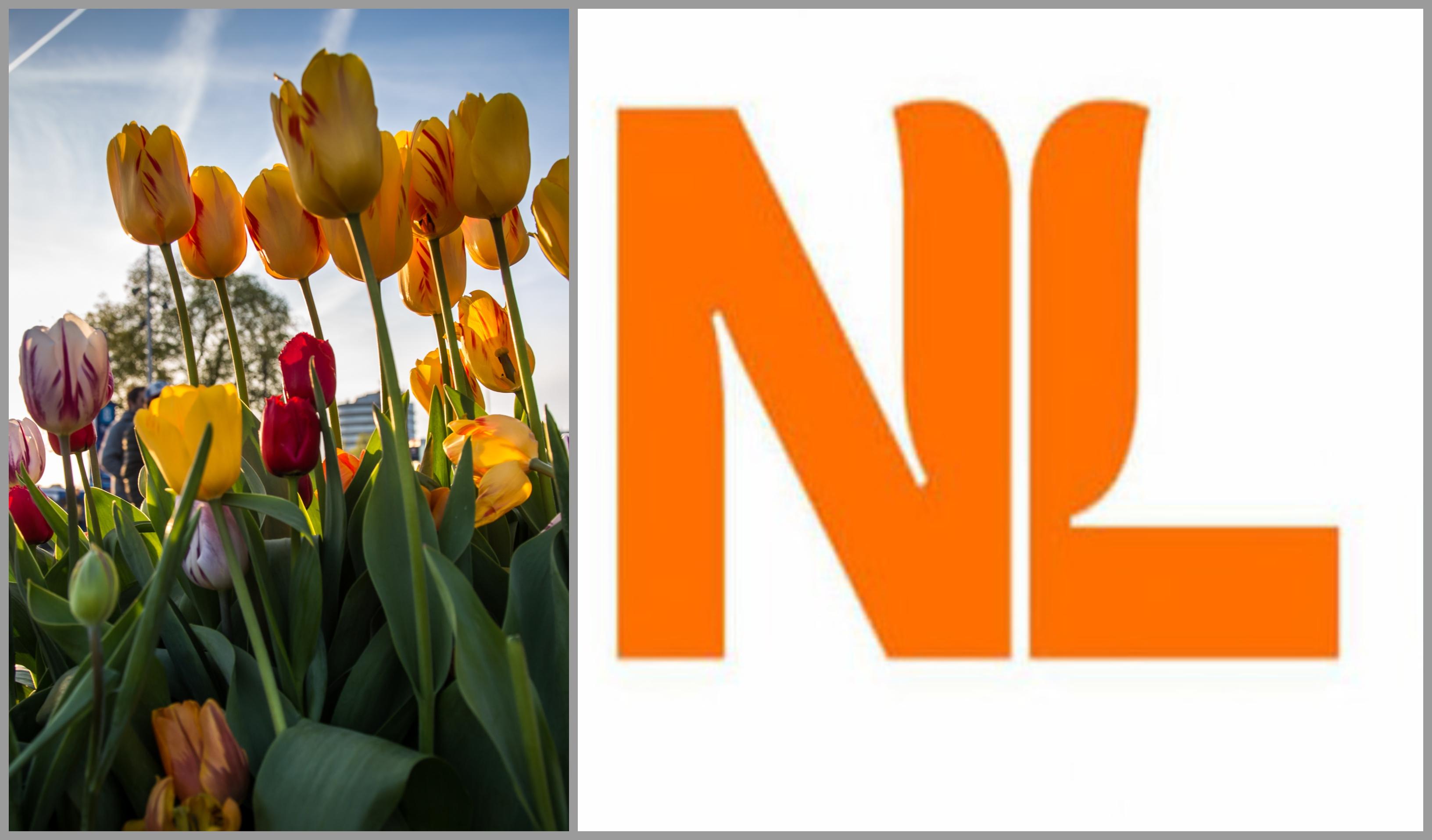 netherlands-logo.jpg