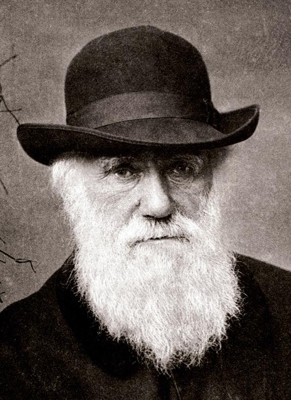 Charles_Darwin_1880.jpeg