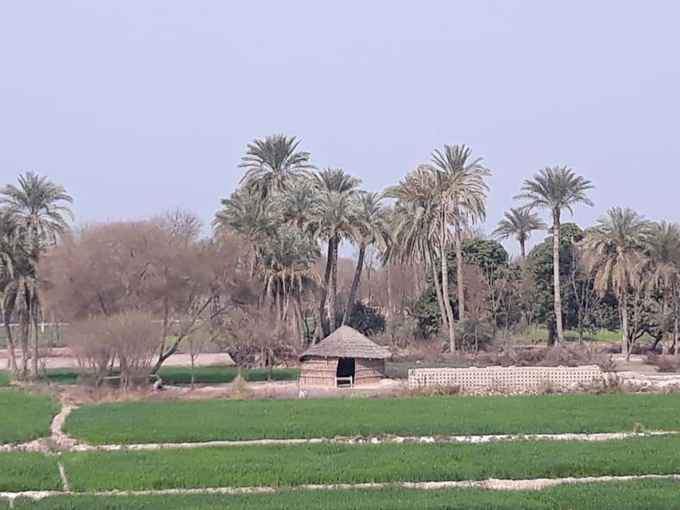 thumbnail_Gopa (Sarki, Teh. Ali Pur).jpg