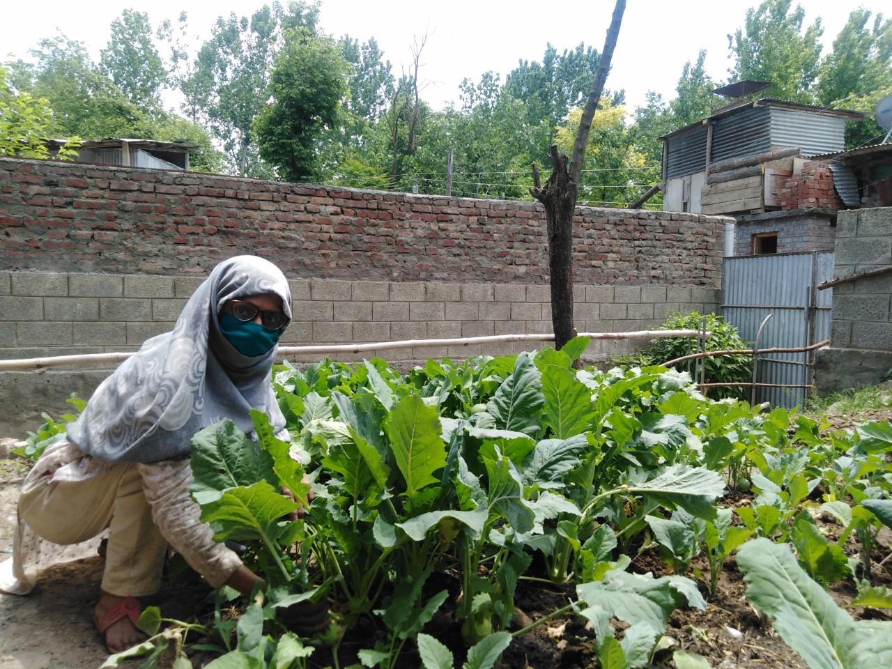 thumbnail_Shazia Bhat,,,, Photo Zahoor Hussain.jpg